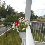 Red and white petunias in white gutter garden on apartment railing