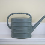 Watering can with spout