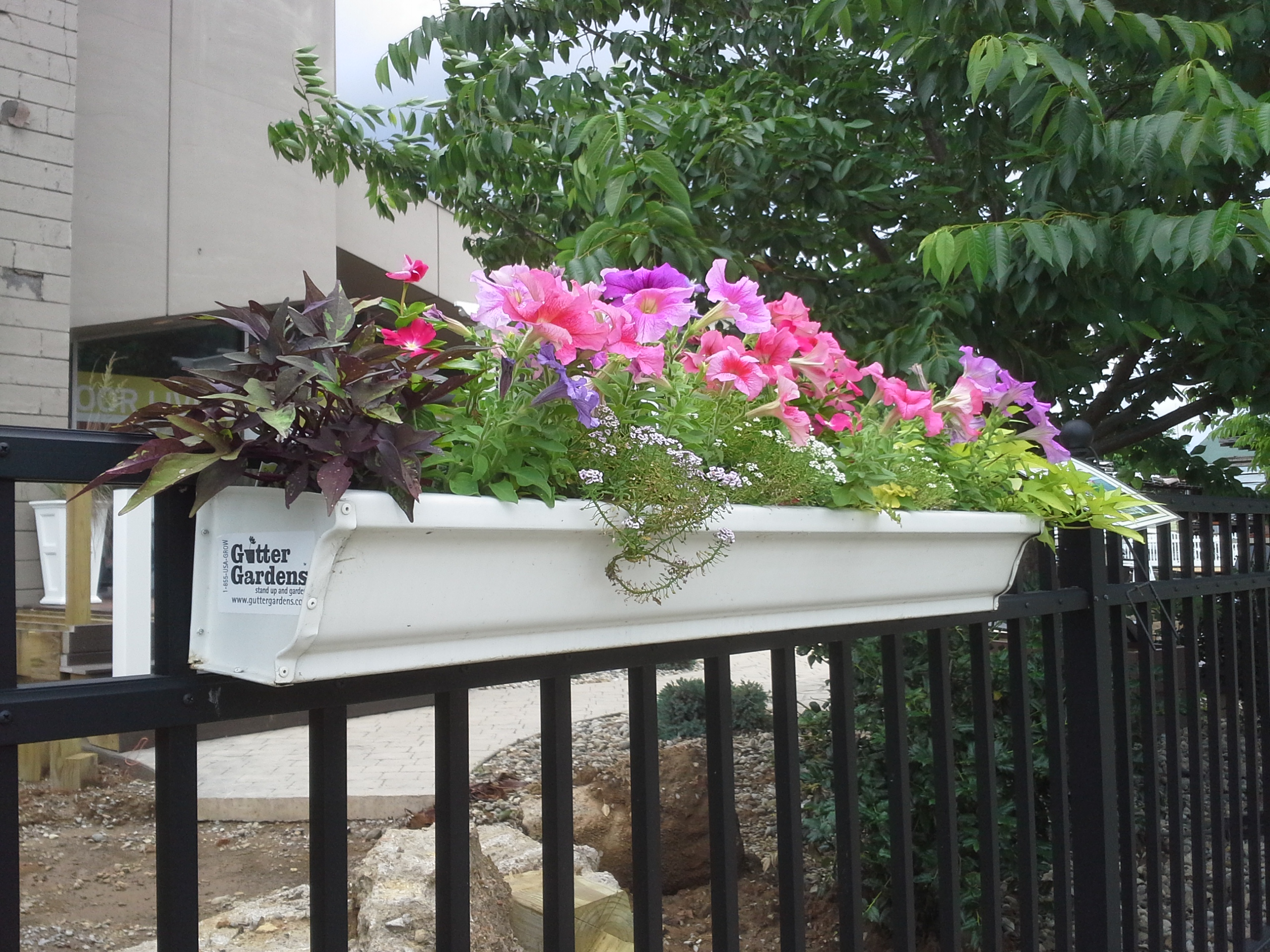 Gutter Garden Planters Hang From Many Different Kinds /sizes Of Railings.